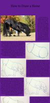 Tutorial: How to Draw a Horse by EgyptianDragon1