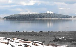 Whidbey Island: Snowy View II by Photos-By-Michelle
