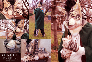 Khajiit Partial by Tsebresos