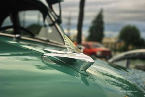 Ford Hood Ornament by amosis55