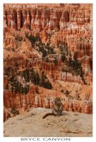 Bryce Canyon - Close Up by Kumiko-Art