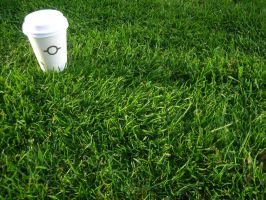 Cup in the grass - wallpack by rzepak