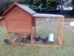 New Chook house we just finished building ^^ by Goremise