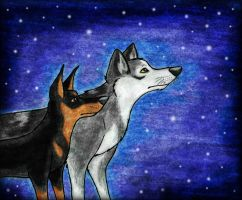 Under the Stars by wahyawolf