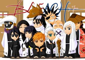 Bleach-Captains by misjake