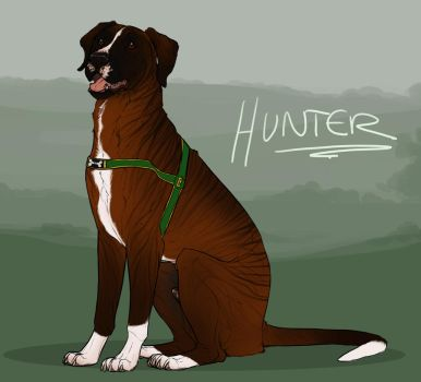 Hunter by sealle