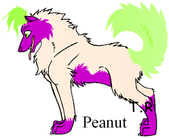 Jeff Dunham Wolves: Peanut by The-Ravens-Of-Moraea