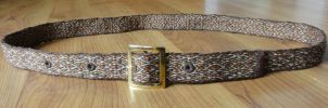 decorative belt autumn colors by were-were-wolfy