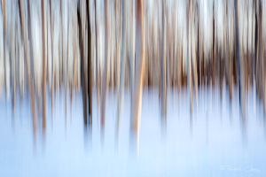 .:Winter Abstract:. by RHCheng