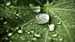 Water Dropets for ur HDTV by Eternal-Polaroid