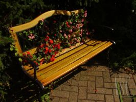 Floral Bench by Pentacle5