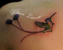 Realistic Hummingbird - BB by SmilinPirateTattoo