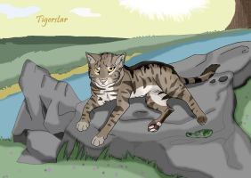 Tigerstar by brownwhisker