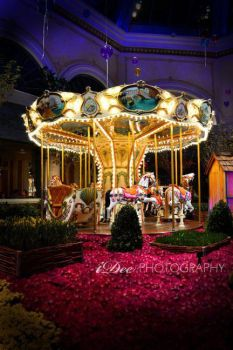 merry go-round by indriand