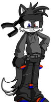 My Unnamed Sonic OC by AceRome