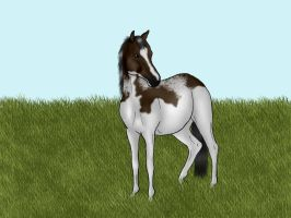 Yearling Auction Bid by crazykate1