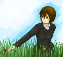 Grass by KyoukiW