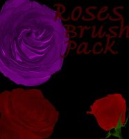 Rose Brushes 3 Pack by NotPeople-Stock