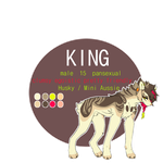 King ref sheet +2014+ fursona by city-kings