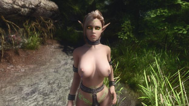 the biggest nude mods and game skins collection  Nude Patch