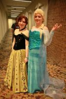 Disney Frozen Elsa and Anna Costume Cosplay by Drkldysebastina
