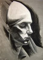 Shaded Plaster Cast Head 2 by hglucky13