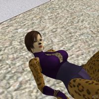 Cheetah in the floor by Toshiie1