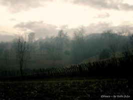 Fence by Dristor2507