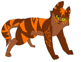 Thornpaw by deaththekidfangirl