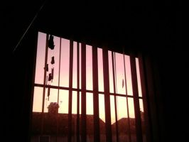 The Veiw From My Window by Catastrophewaitresss