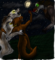On A Moonlit Night by Crazy-Book-Worm