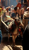 3 Days in Morocco VI by Bateor