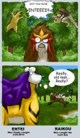 The Wild Entei Let Down Its Guard! by CloudsGirl7
