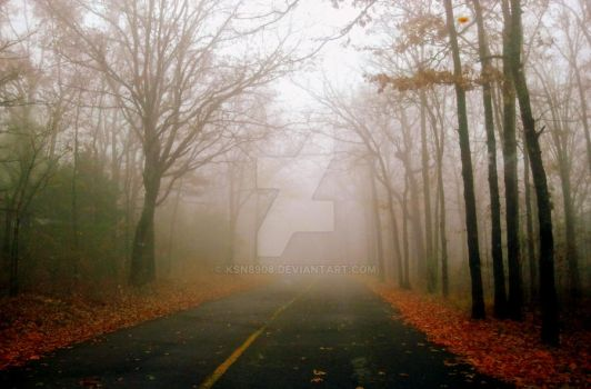 Fog and Forest by ksn8908