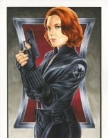 Avengers: Black Widow by smlshin