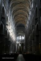 Nave by MorganeS-Photographe