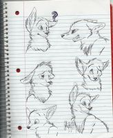 Practicing Expressions by RavingFoxie