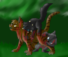 Fight against Tigerstar by TwilightTheEevee