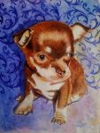 Chihuahua pup - watercolor by Giselle-M