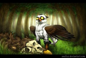 G - Ozzer - Young Gryphon - 1 by Anellyz