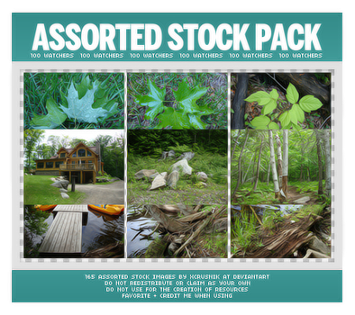 Assorted Stock Images Pack (100 Watchers) by xcrusnik