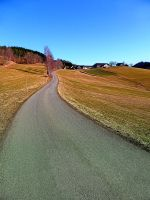 Country road through rural scenery by patrickjobst