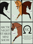 Arctic Night Stables Mini Show -- Dressage by ShowDiva