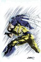 Wolverine by sentive