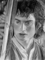 Frodo Baggins by happylilsquirrel