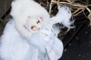 Snow Queen by ria-photobook
