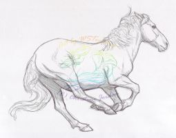 Prize: Cantering horse sketch by WSTopDeck