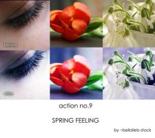 action no.9- SPRING FEELING by bellalleb-stock