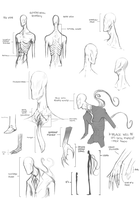 Slender Being Anatomy by SUCHanARTIST13