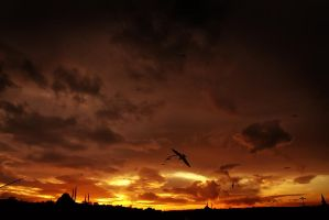 sunset halic by Cafernon